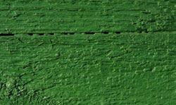 Paint it green.