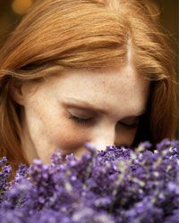 Aromatics elevate your rooftop garden to sanctuary status.