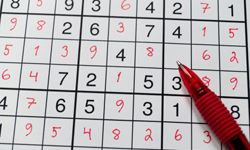 People swear by Sudoku -- and spend hours and hours and hours playing it.