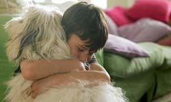 When your pet is like family, it's tough to board it at the kennel. See more pet pictures.