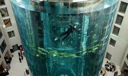 A diver cleans the glass of the 25 meters (82 feet)-tall AquaDom in the lobby of the Radisson SAS Hotel in Berlin. The aquarium contains about 1,500 fish. Fortunately, cleaning your personal fish tank won't involve getting a dive mask on.