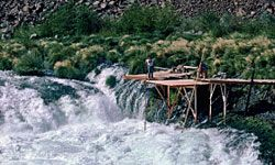 Amazingly, salmon are able to swim upstream through the Deschutes River's powerful white-water rapids. These platforms are set up for salmon fishing.