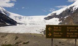 """消退的冰川,比如加拿大贾斯珀国家公园的冰川,是气候变化的明显后果之一。欧宝平台代理""""border="""