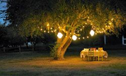 The right lighting can add drama and romance, and create a soft glow outdoors.