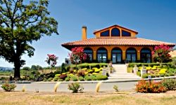 If you love fine wine and beautiful scenery, a cycling trip in Sonoma County, Calif., might be the perfect vacation.