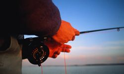 Fishing Image Gallery By fishing responsibly, recreational fishermen can help conserve local fish populations and habitats. See more pictures of fishing.