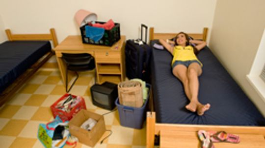 5 Ways to Keep Pests Out of Your Dorm Room