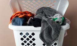Do your laundry regularly -- you don't want your undershirts to turn into a den for bugs, do you?