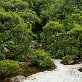 A Japanese garden in Kyoto.
