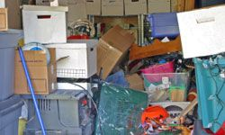 There's nothing like bright spring sunshine to illuminate the sad state of your messy garage.