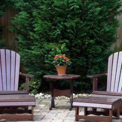 Turn your backyard into an allergy-free garden.